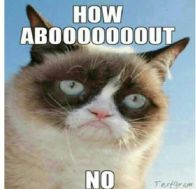 25 Very Funny Grumpy Cat Meme Pictures And Photos