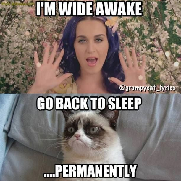 I Am Wide Awake Go Back To Sleep Permanently Funny Grumpy Cat Meme Image 30 very funny grumpy cat meme pictures and photos