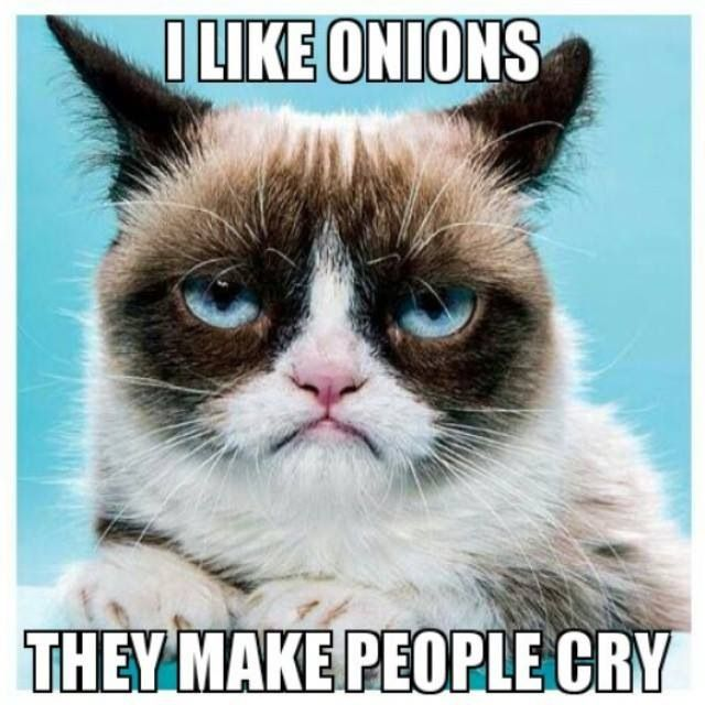 I Like Onions They Make People Cry Funny Grumpy Cat Photo 30 very funny grumpy cat pictures and images you need to see