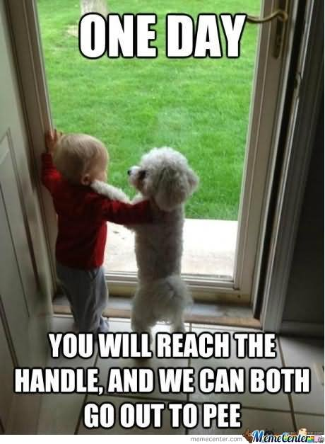 One Day You Will Reach The Handle And We Can Both Go Out To Pee Funny