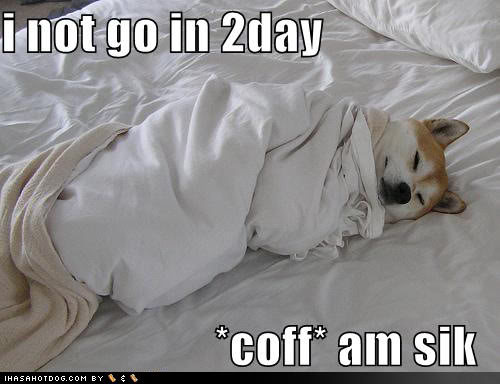 Sleeping Dog Funny Sick Meme Image 25 most funniest memes about being sick images and pictures
