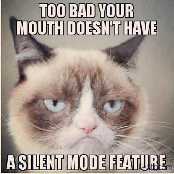 Too-Bad-Your-Mouth-Doesnt-Have-A-Silent-Mode-Feature-Funny-Grumpy-Cat-Meme-Image.jpg