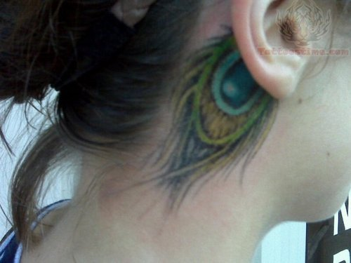 Peacock Feather Tattoo Behind Ear