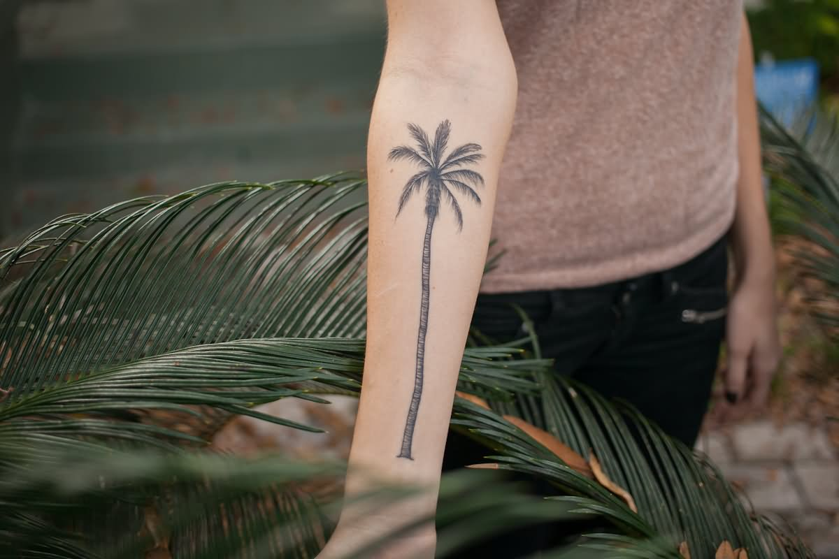 Skulls on palm tree tattoo on side rib for Tree tattoo on forearm