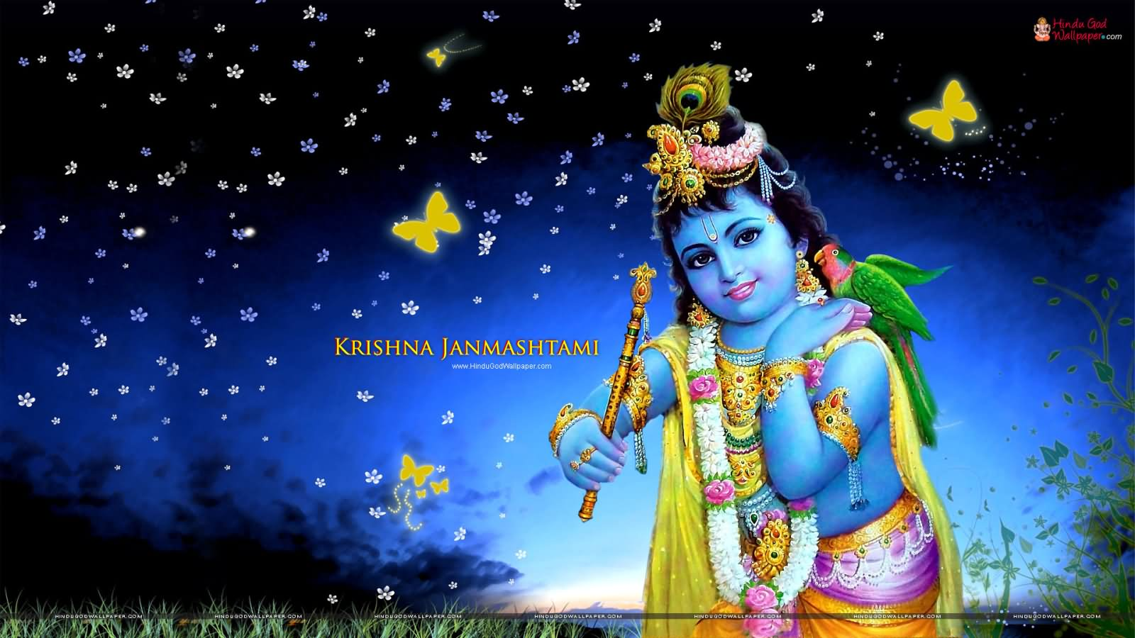 Sri krishna jayanti wallpaper - Wish You Very Happy Krishna Janmashtami 2016