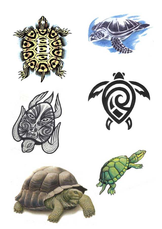 50 awesome tribal turtle tattoos designs. Black Bedroom Furniture Sets. Home Design Ideas