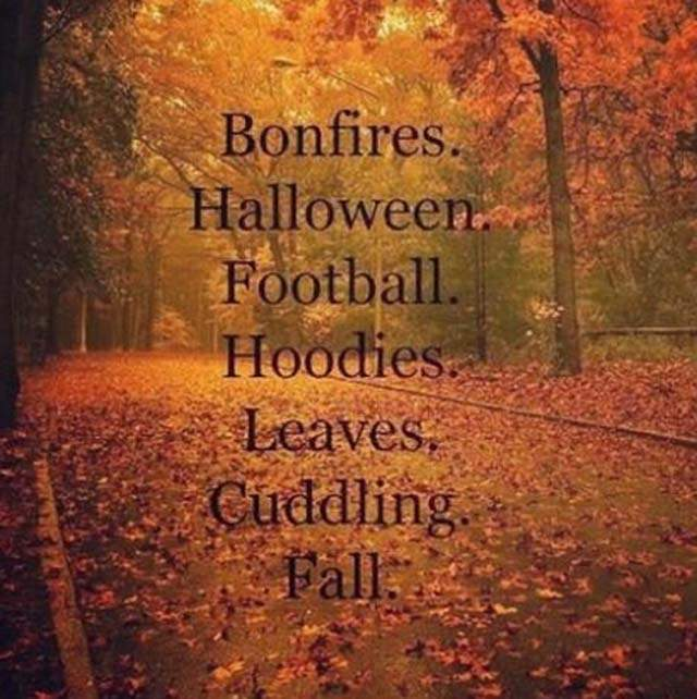Superior Bonfires, Halloween, Football, Hoodies, Leaves, Cuddling, Fall Happy First  Day Of Fall