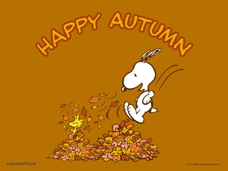 Image result for first day of fall images