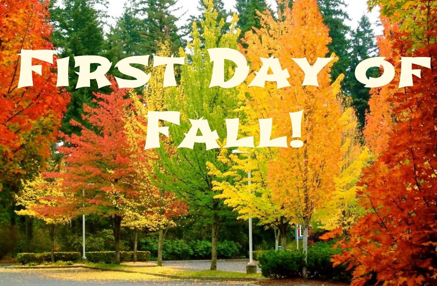 Beautiful Happy First Day Of Fall 2016 Wishes Picture