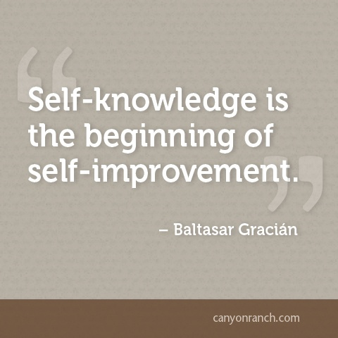 Self Knowledge Is The Beginning Of Self Improvement