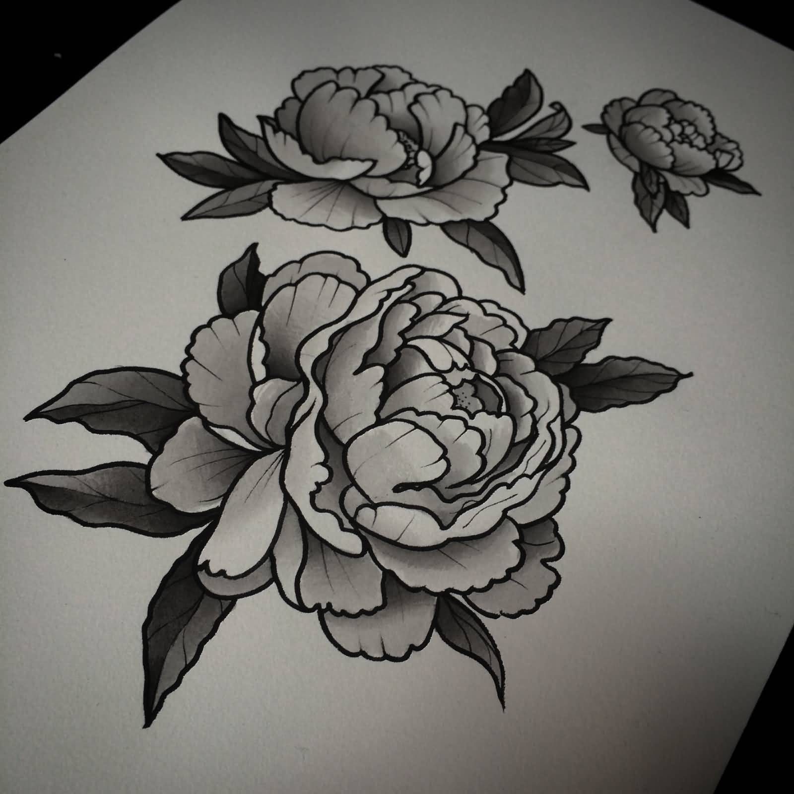18 latest peony tattoo designs for Black and grey tattoo designs