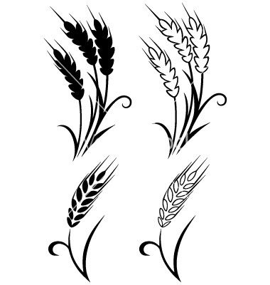 8272a0f94447a Black Four Wheat Tattoo Designs