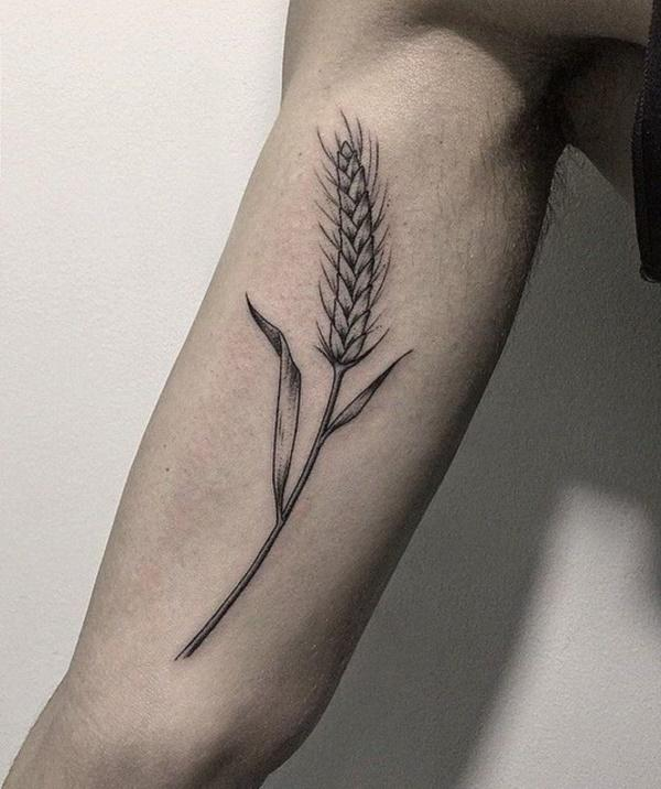 1931b34f01544 Black Ink Wheat Tattoo On Right Bicep