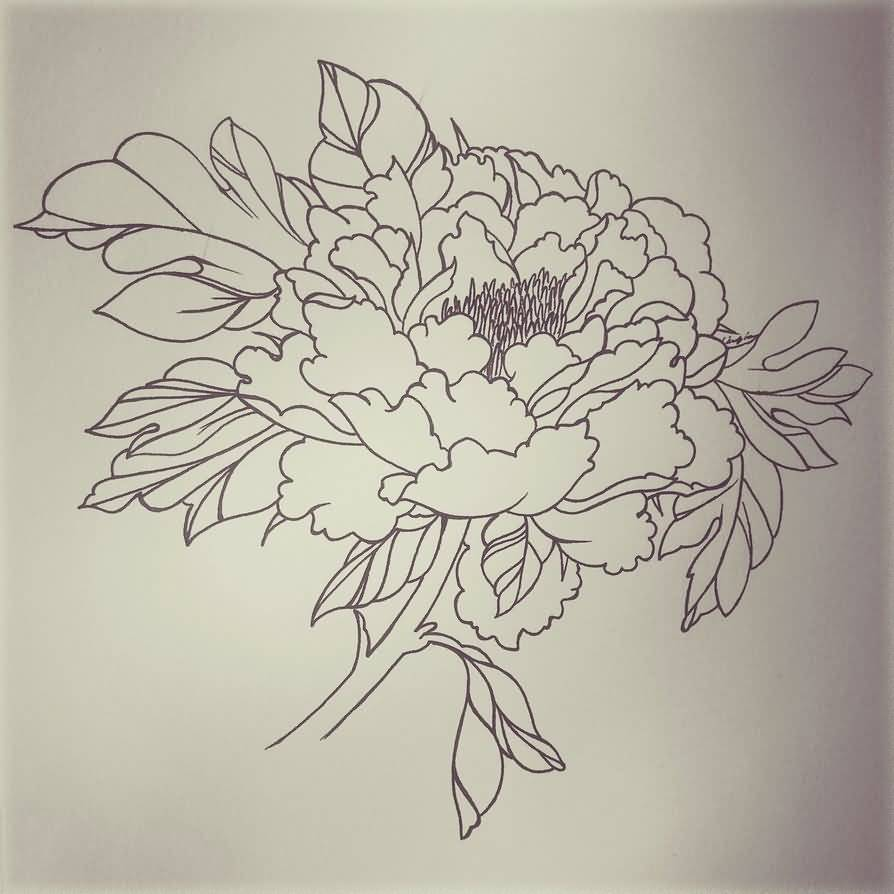 Tattoo Outlines Flowers Black And White: 18+ Latest Peony Tattoo Designs