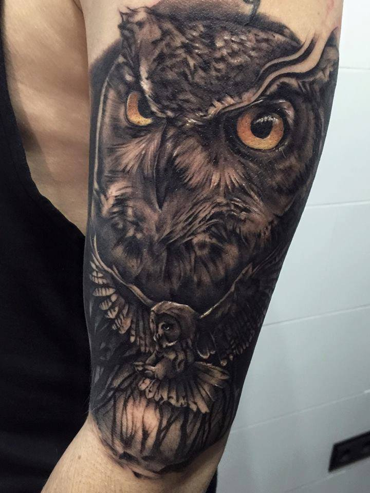 4+ Amazing Owl Tattoos by Pxa Body Art