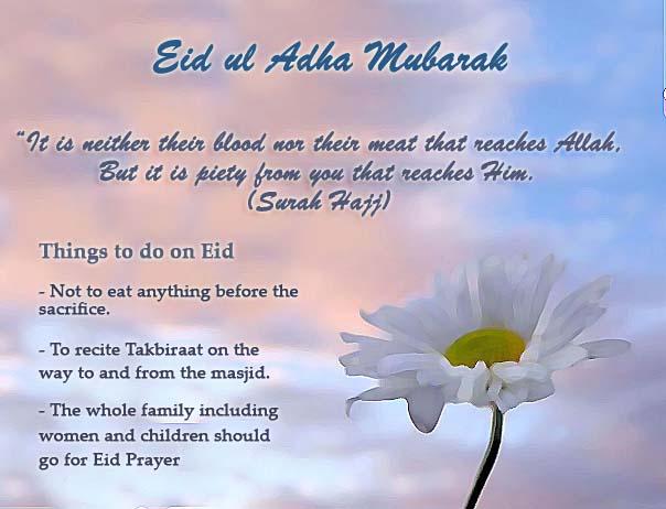 65 best eid ul adha 2016 greeting photos and images eid al adha 2016 mubarak things to do on eid m4hsunfo