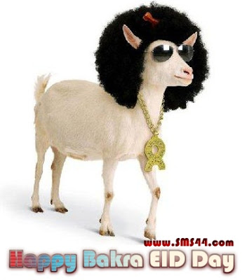 18 Happy Bakra Eid Greeting Pictures And Photos