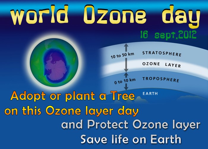 essay on ozone layer protection Science essays: ozone layer depletion yes, it is the ozone layer it protection afforded by the ozone layer the term.
