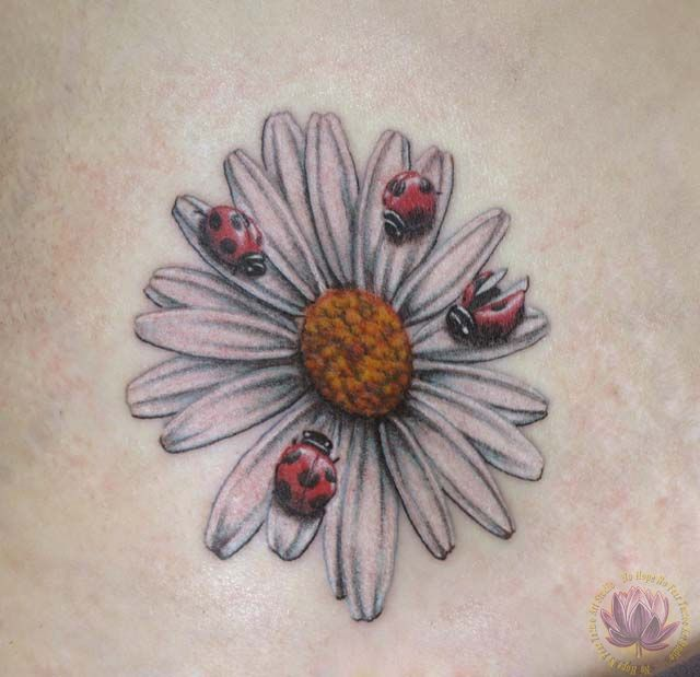 43+ Incredible Ladybug And Flower Tattoos