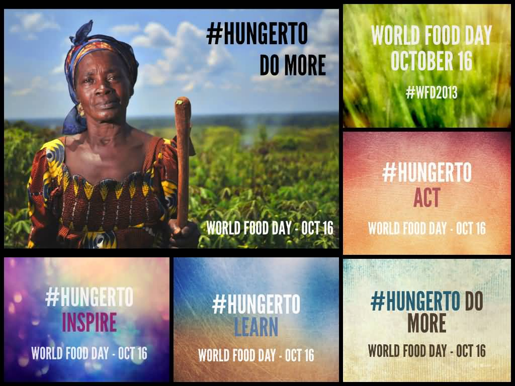 World hunger essay