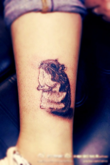 20 Amazing Hamster Tattoos Collection
