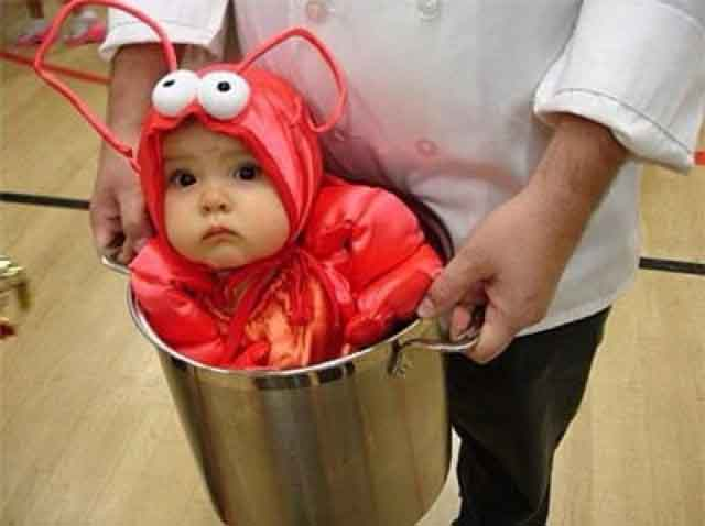 baby lobster halloween costume picture