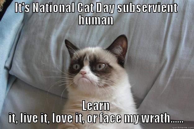 Its National Cat Day Subservient Human 41 beautiful national cat day 2016 pictures and photos