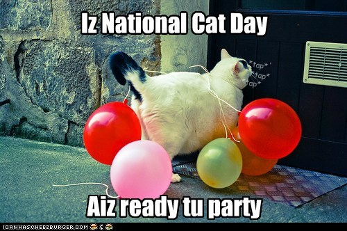 Iz National Cat Day Aiz Ready Tu Party Cat With Balloons iz national cat day aiz ready tu party cat with balloons