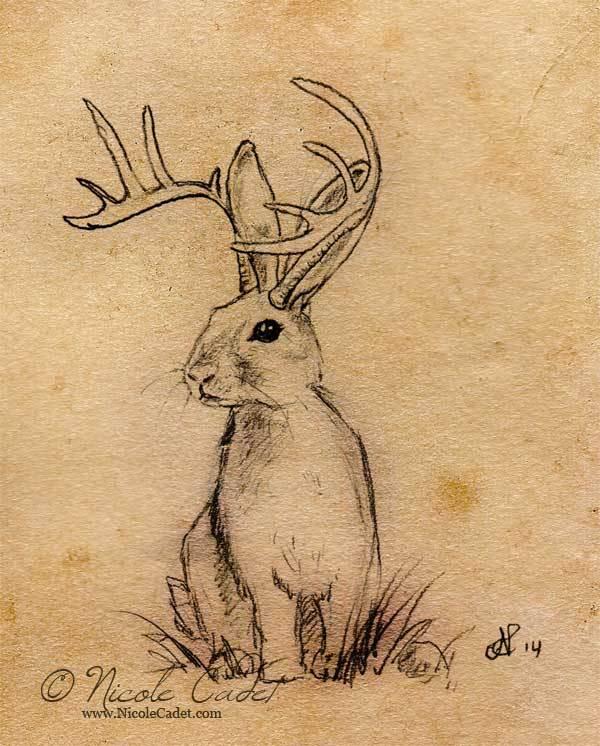 23 jackalope tattoo designs