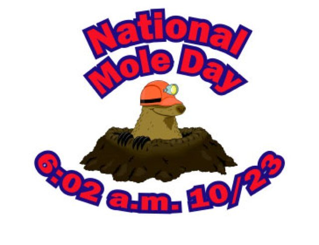 National Mole Day October 23 Picture