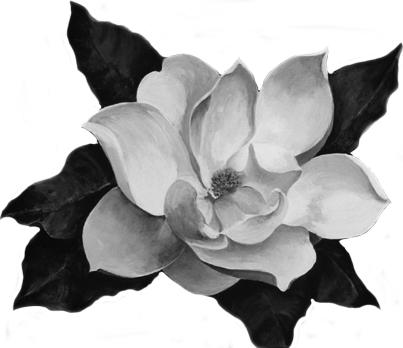 Black And White Magnolia Tattoo Design By Kitsunenoir