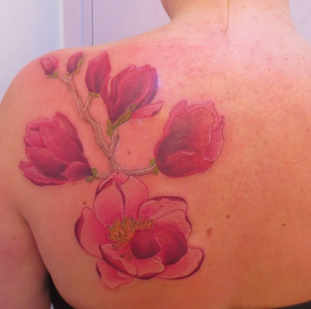 17+ Beautiful Magnolia Tattoos Ideas