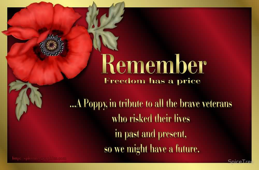 50 most beautiful pictures and photos of veterans day remember freedom has a price a poppy in tribute to all the brave veterans on veterans mightylinksfo