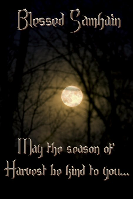 Blessed samhain may the season of harvest be kind to you m4hsunfo