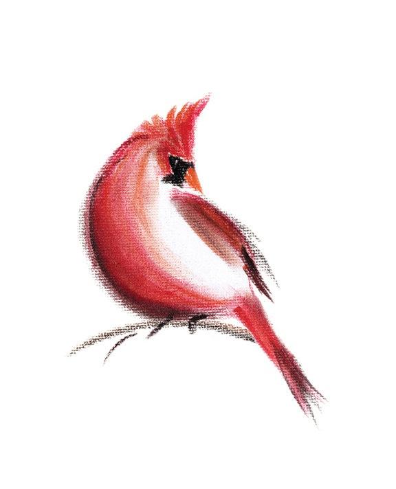 Watercolor Cardinal Tattoo: 15+ Latest Cardinal Tattoo Designs