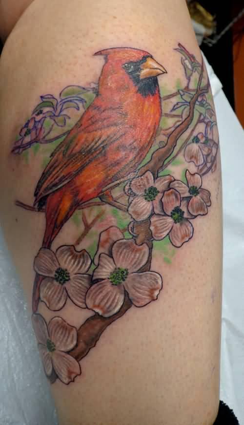 43 Wonderful Cardinal Tattoos