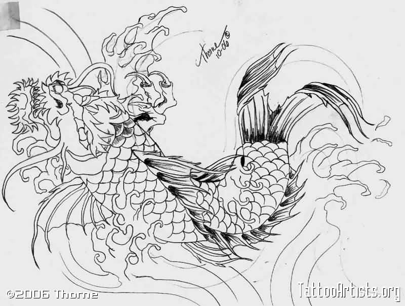 Japanese koi fish dragon drawing