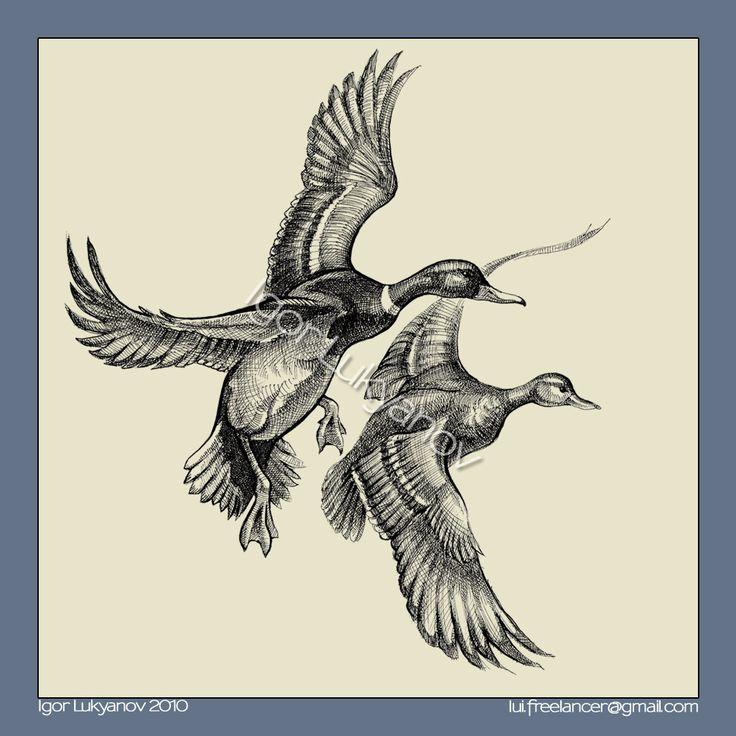 25 flying duck tattoos. Black Bedroom Furniture Sets. Home Design Ideas
