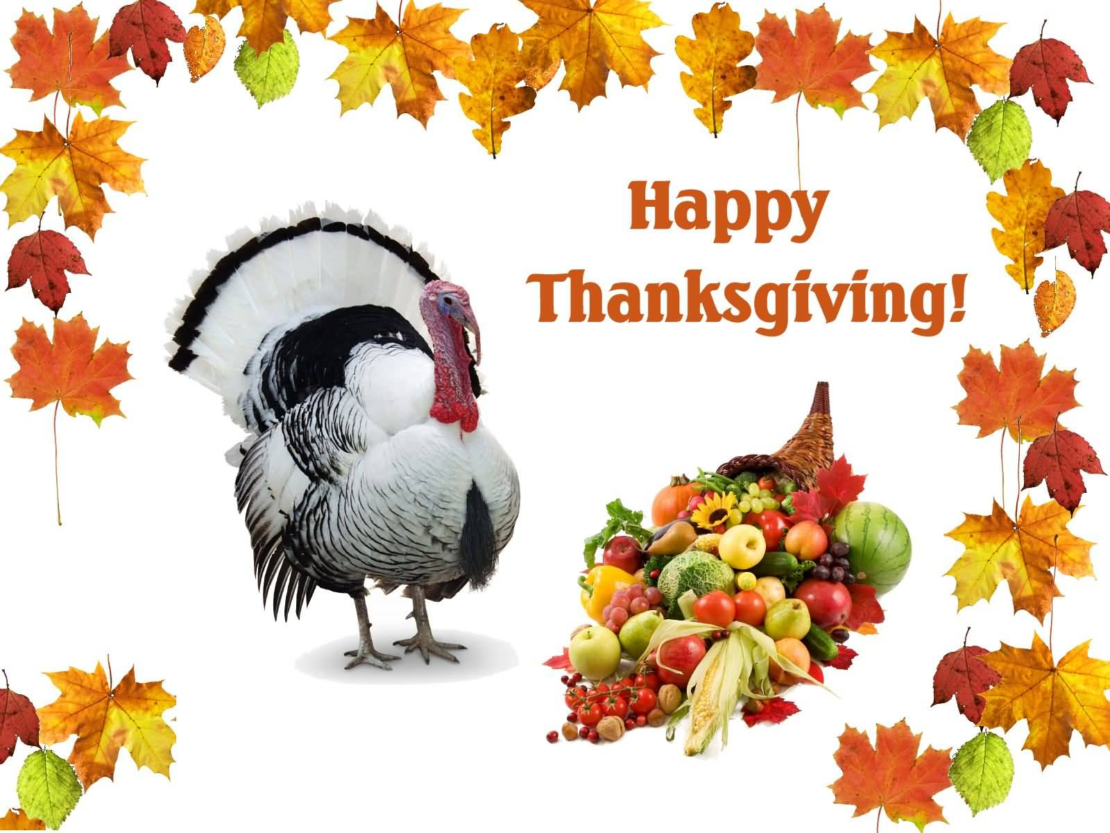 Happy Thanksgiving Day Turkey And Fruits Picture
