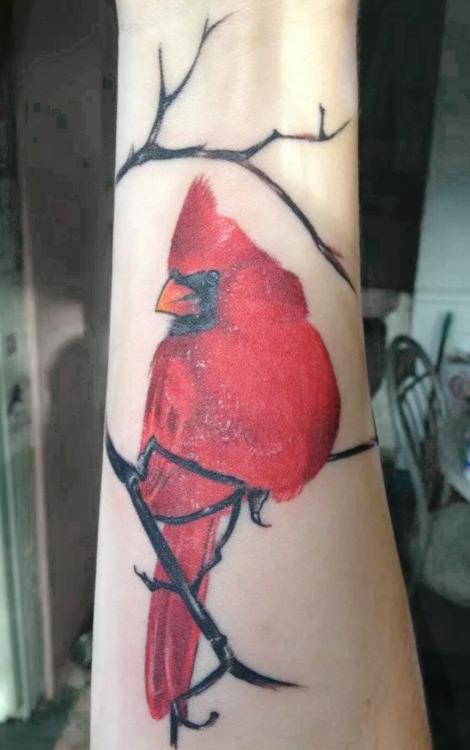 20 Cute Cardinal Tattoos Ideas