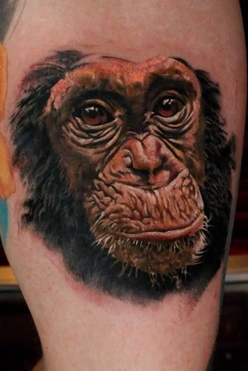 45 amazing chimpanzee tattoos for Monkey face tattoo