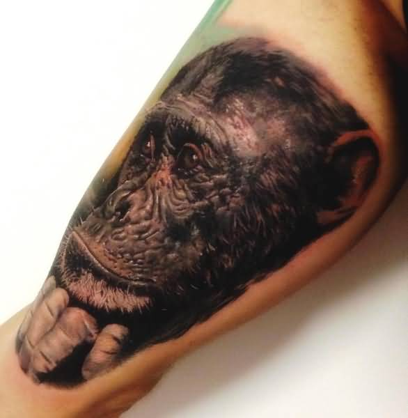 abbastanza Chimpanzee Tattoo On Bicep by Alex de Pase FZ64