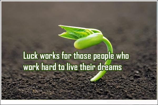 Luck Quotes Simple 48 Luck Quotes And Sayings