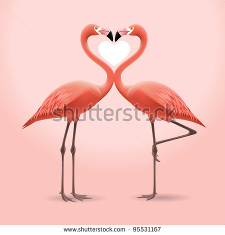 the importance of the flamingo in the american culture It has become a tradition for many generations to understand the importance of nature  of the american  bonaire is one of the only flamingo.