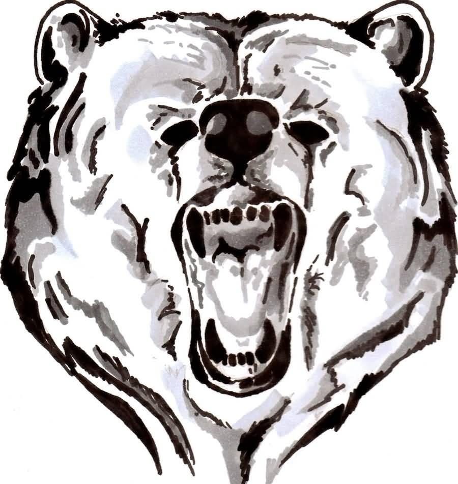 Angry bear head drawing - photo#27