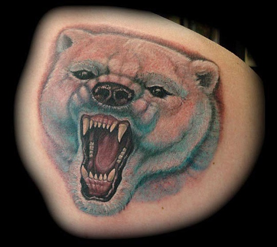 60 nice polar bear tattoos. Black Bedroom Furniture Sets. Home Design Ideas
