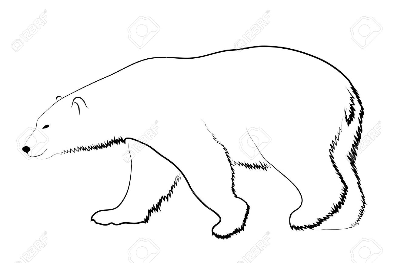polar bear face template - polar bear face clipart sketch coloring page