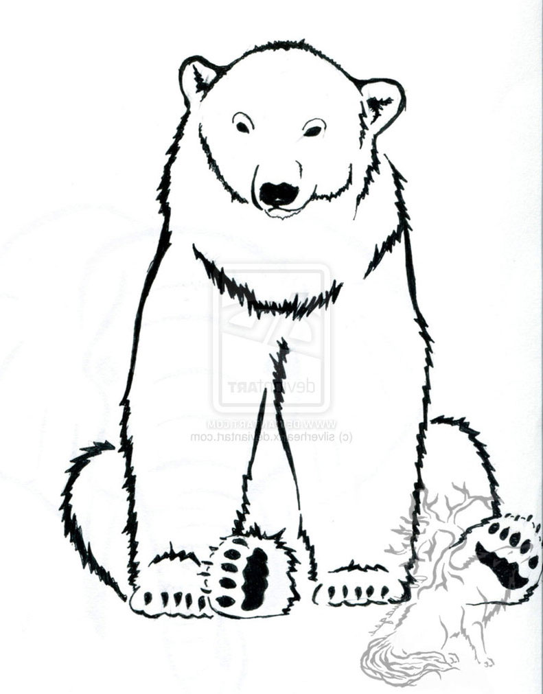Line Art Bear : Amazing polar bear tattoo designs