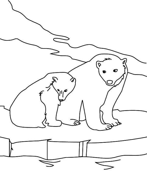 22 outline polar bear tattoos for Polar bear coloring pages