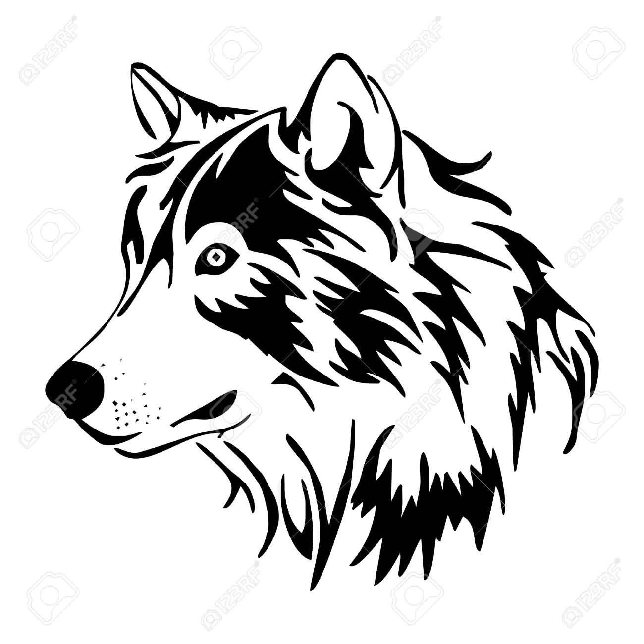 Line Drawing Wolf Head : Amazing coyote tattoo designs